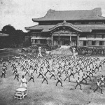 Okinawan martial arts